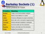 berkeley sockets 1
