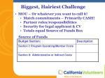 biggest hairiest challenge