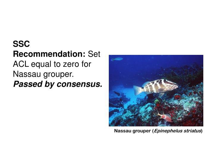 SSC Recommendation: