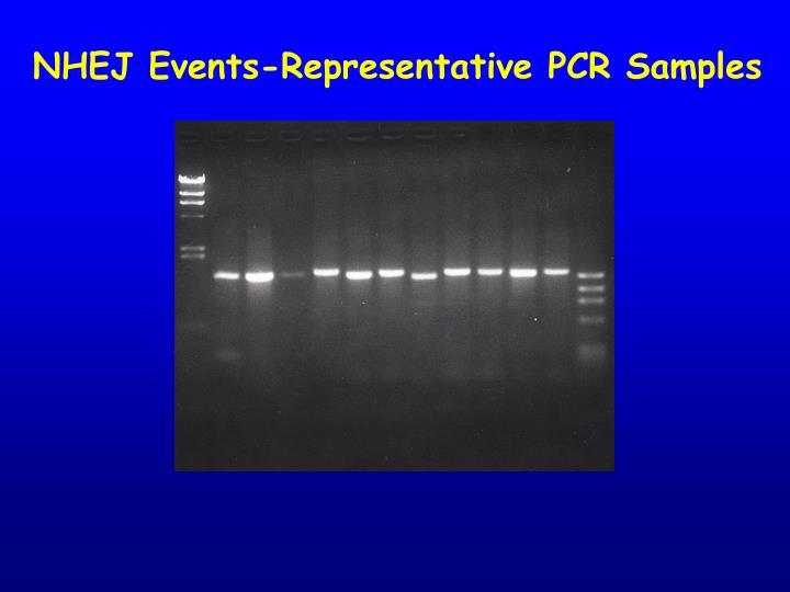 NHEJ Events-Representative PCR Samples