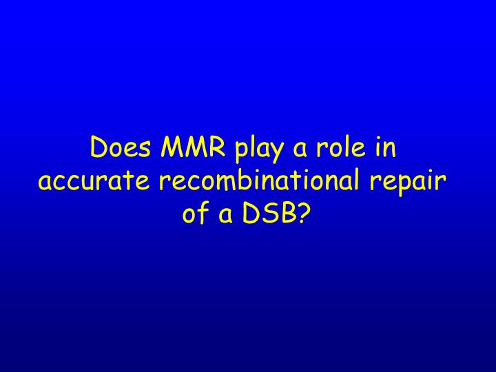 Does MMR play a role in