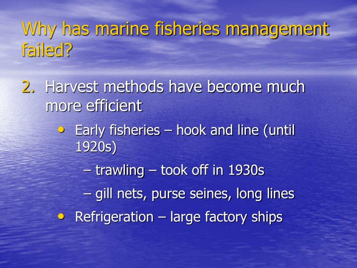 Why has marine fisheries management failed?