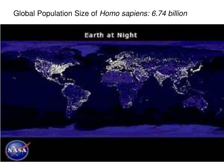 Global Population Size of