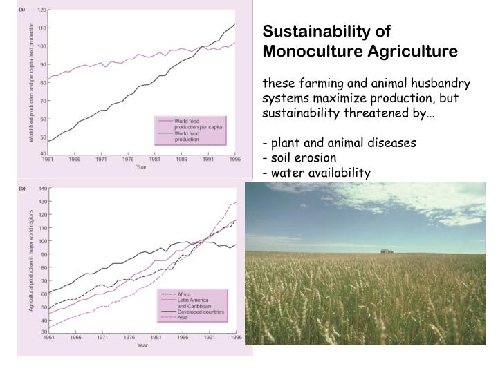 Sustainability of Monoculture Agriculture