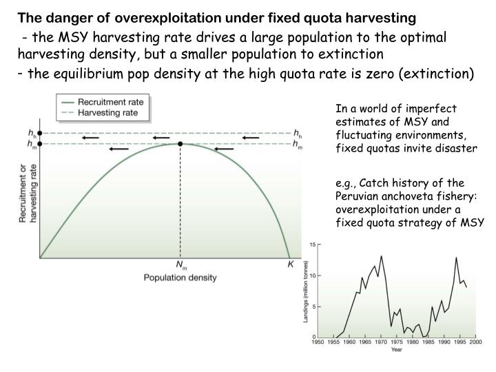 The danger of overexploitation under fixed quota harvesting