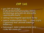 cyp 1a1