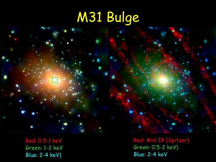 M31 Bulge