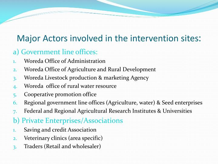 Major Actors involved in the intervention sites