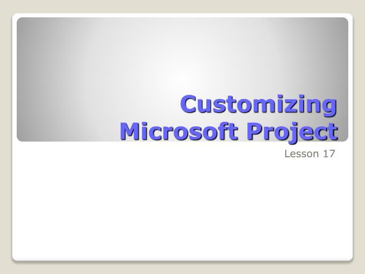 Customizing microsoft project