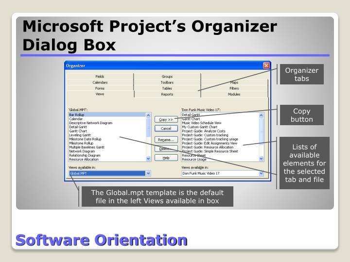 Microsoft Project's Organizer Dialog Box