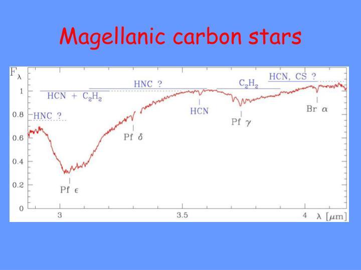 Magellanic carbon stars