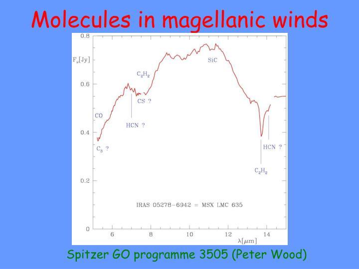 Molecules in magellanic winds