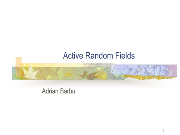 active random fields n.