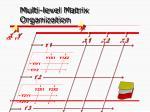 multi level matrix organization
