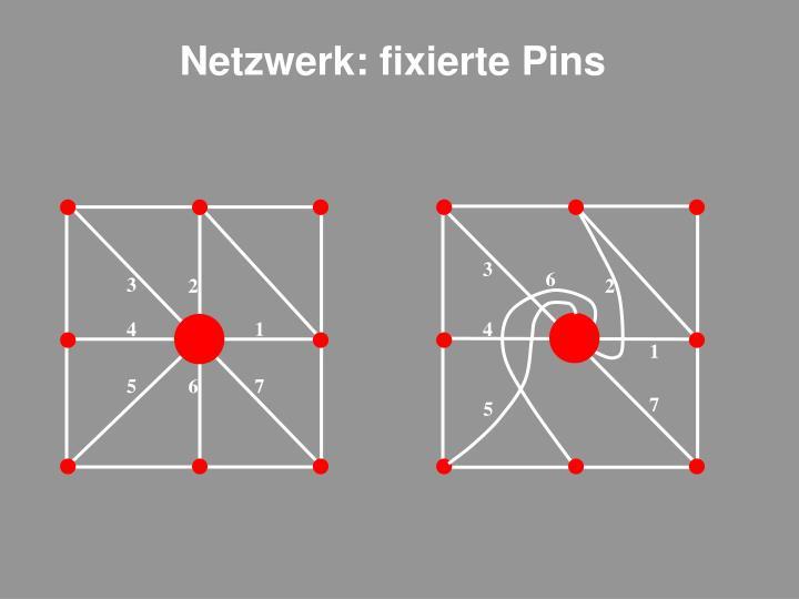 Netzwerk: fixierte Pins