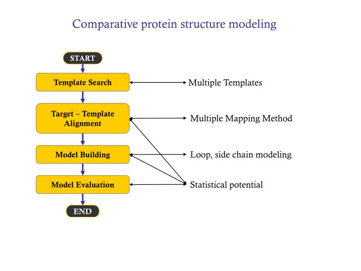 Comparative protein structure modeling