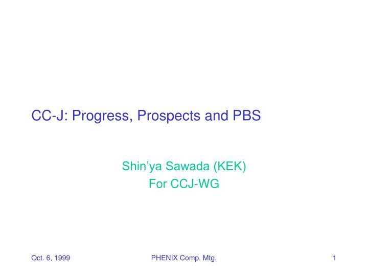 cc j progress prospects and pbs