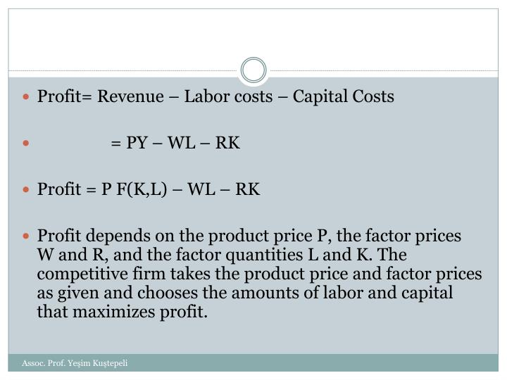 Profit= Revenue – Labor costs – Capital Costs