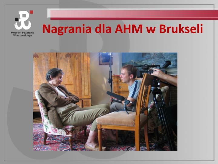 Nagrania dla AHM w Brukseli