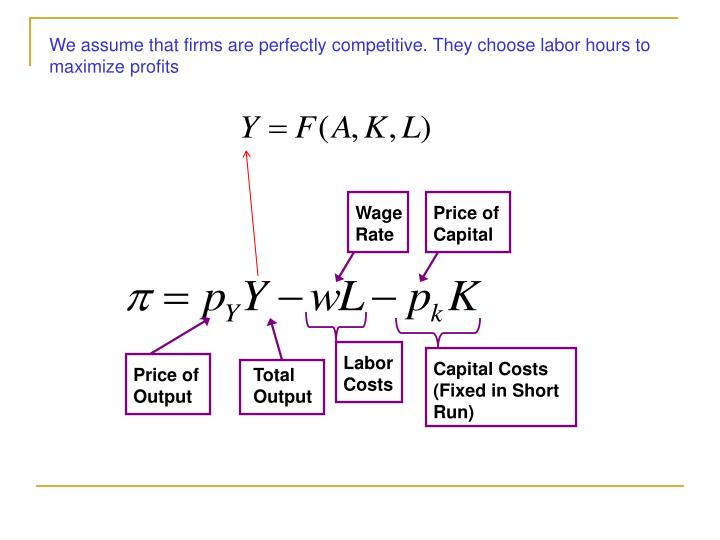 We assume that firms are perfectly competitive. They choose labor hours to maximize profits