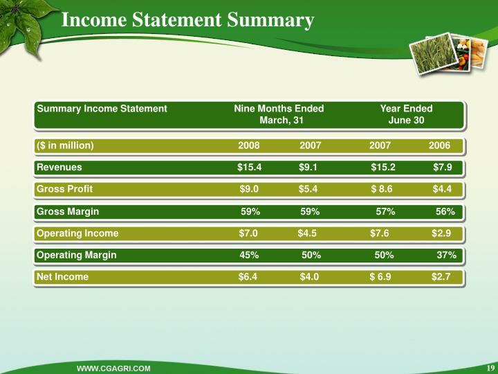 Income Statement Summary