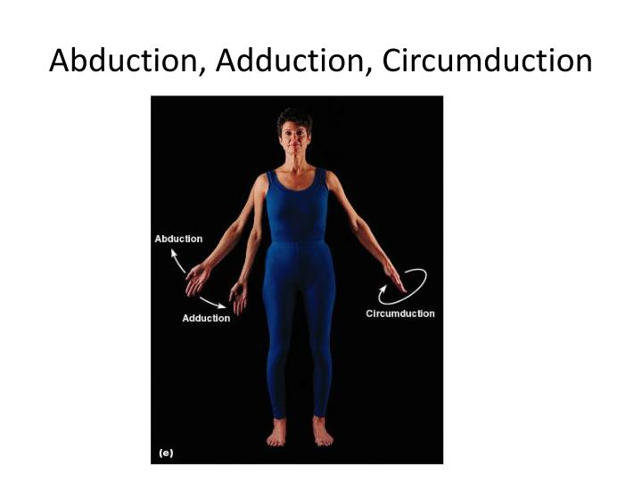 Abduction, Adduction, Circumduction