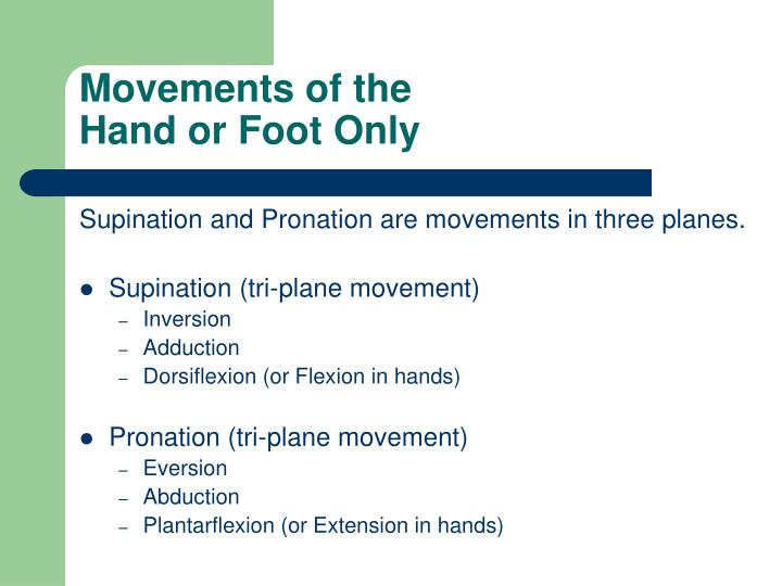 Movements of the