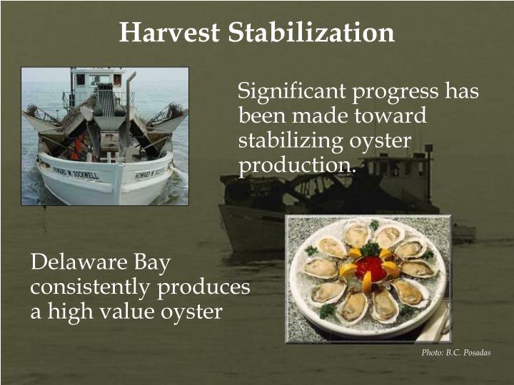 Harvest Stabilization