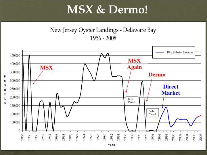 MSX & Dermo!