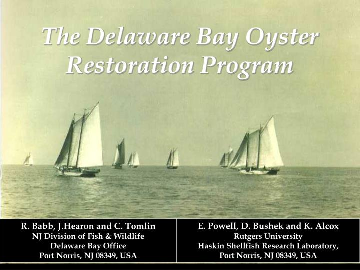 The Delaware Bay Oyster