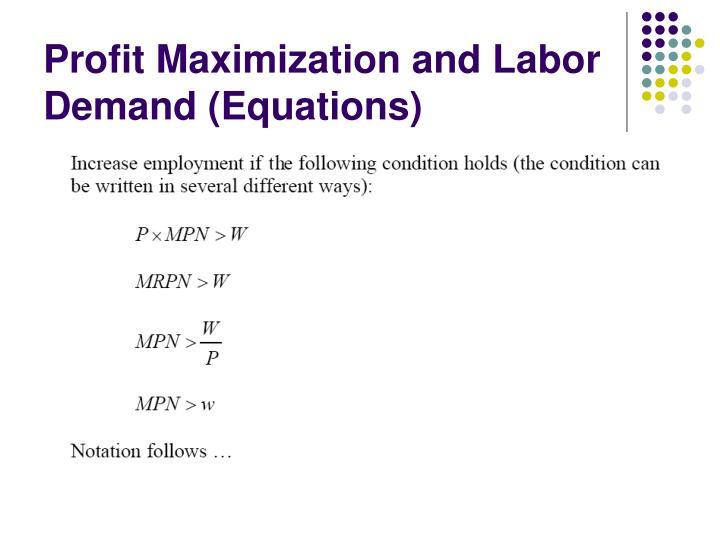 Profit Maximization and Labor Demand (Equations)