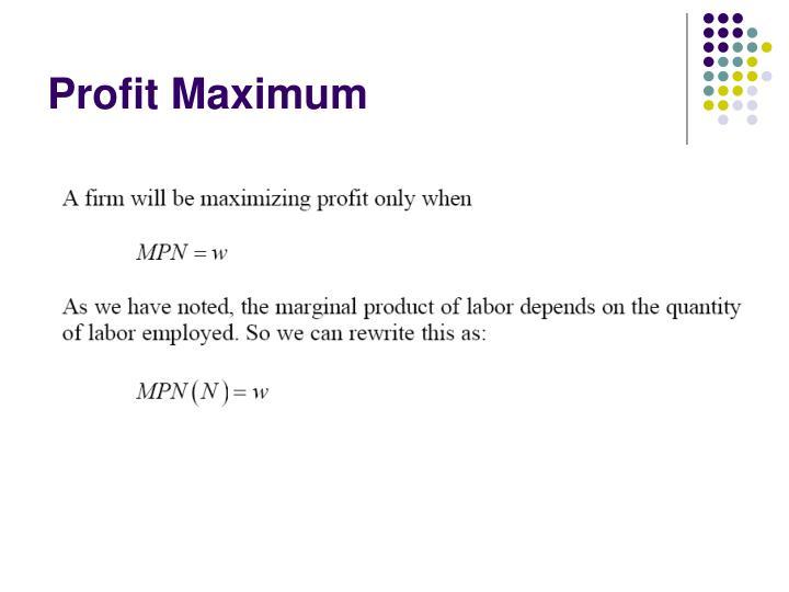 Profit Maximum