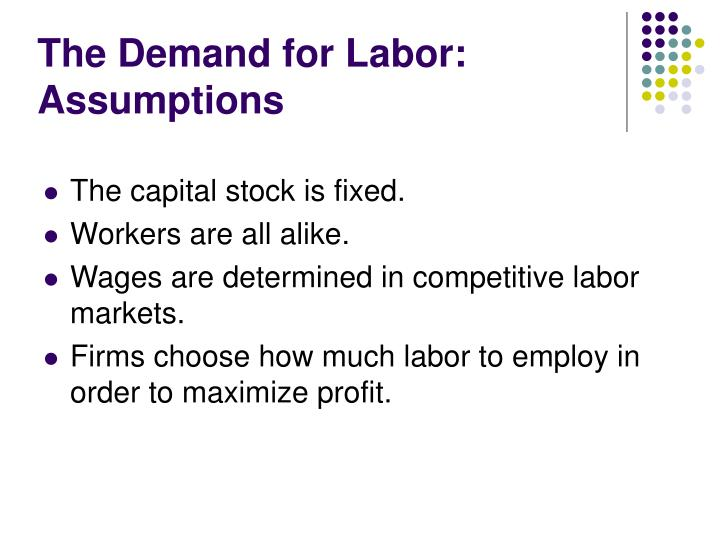 The Demand for Labor: Assumptions