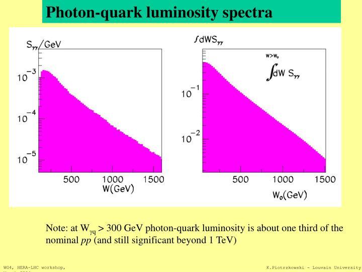 Photon-quark luminosity spectra