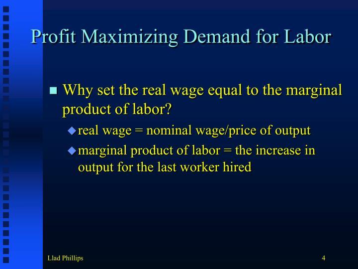 Profit Maximizing Demand for Labor
