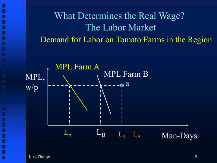 What Determines the Real Wage?