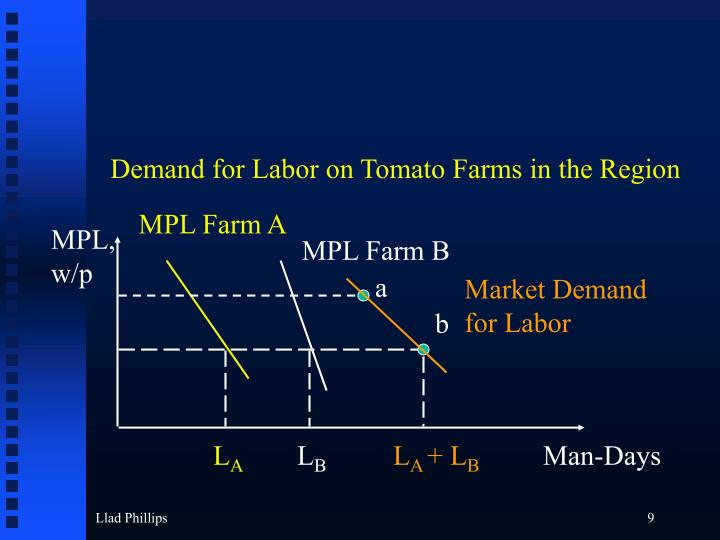 Demand for Labor on Tomato Farms in the Region