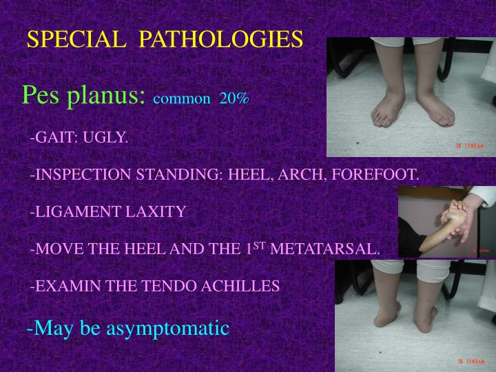 SPECIAL  PATHOLOGIES