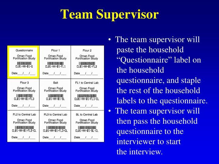 Team Supervisor