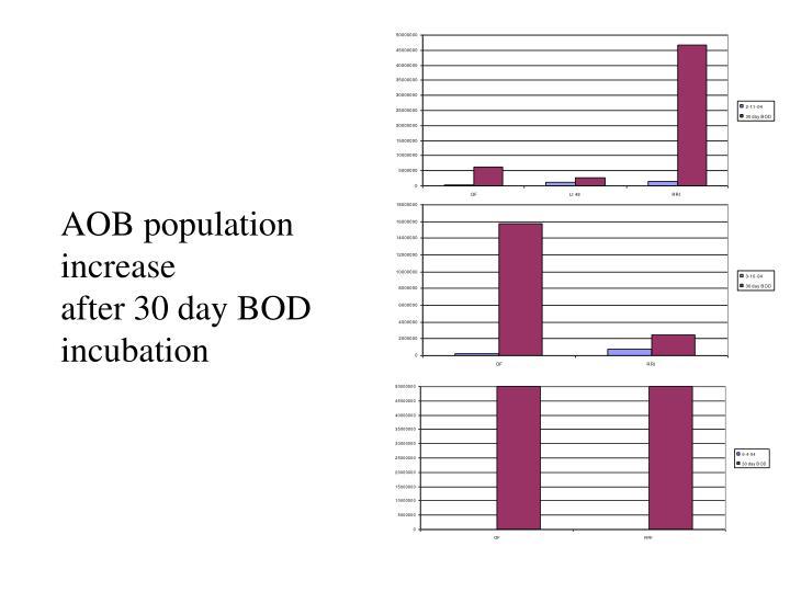 AOB population increase