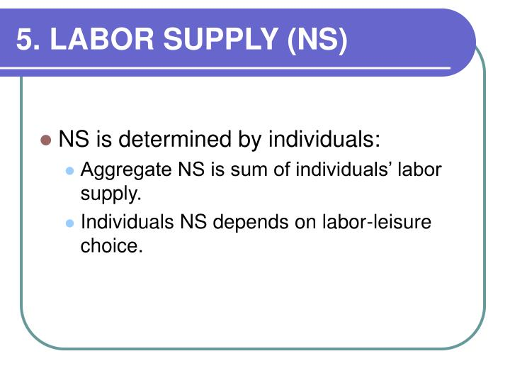 5. LABOR SUPPLY (NS)