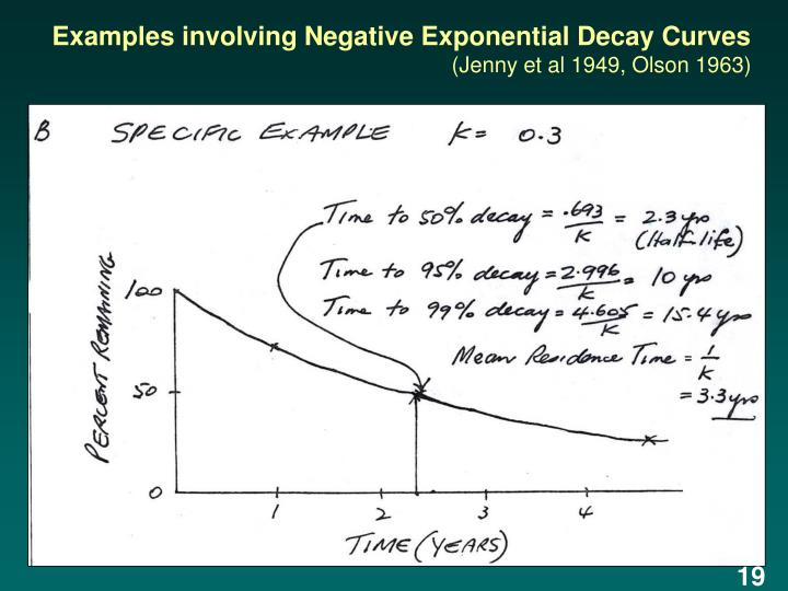 Examples involving Negative Exponential Decay Curves