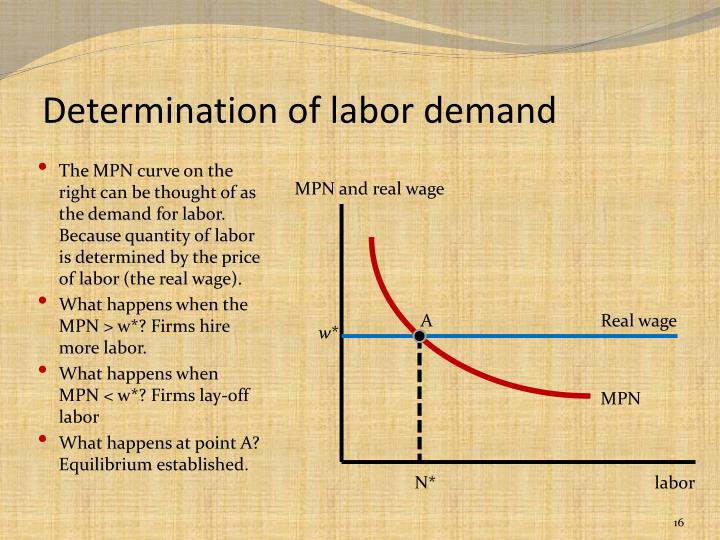 Determination of labor demand