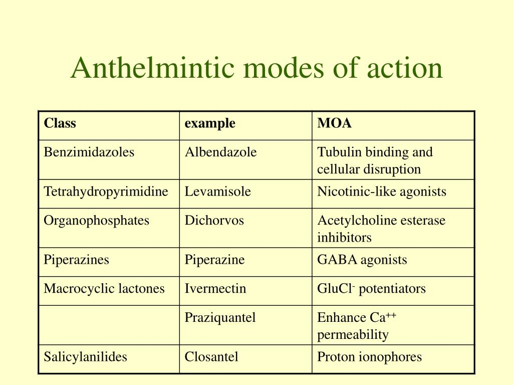 anthelmintic classes