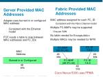 fabric provided mac addresses