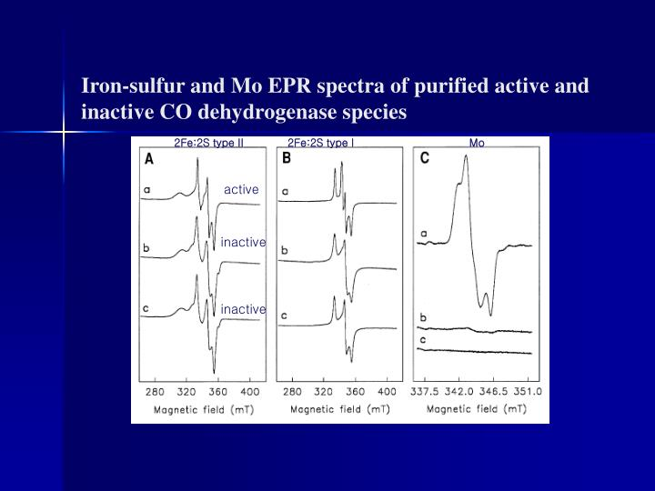 Iron-sulfur and Mo EPR spectra of purified active and inactive CO dehydrogenase species