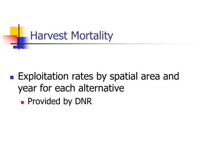 Harvest Mortality