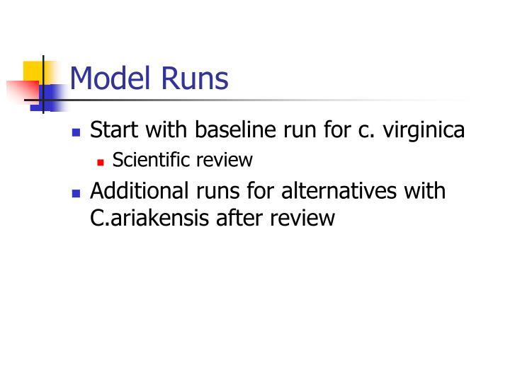 Model Runs