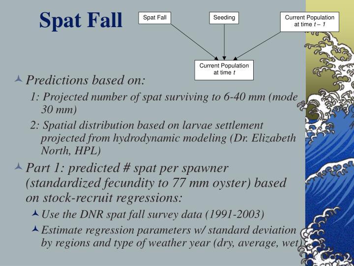 Spat fall