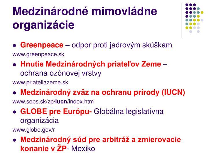 Medzinárodné mimovládne organizácie